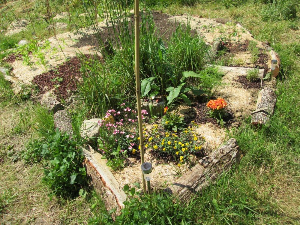 Les edln au jardin se re connaitre for Au jardin by les amis
